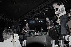 Swans warsaw 10 12 2010 poland m kutera.jpg