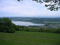 Swiss le landeron 2.JPG