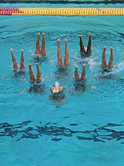 Swimmers perform in an upside-down vertical position