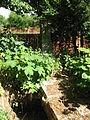 Szentmihályúr temető 1.JPG