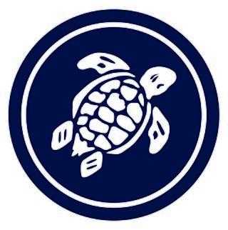Turtle84375