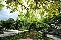 Taichung, North District, Taichung City, Taiwan - panoramio (31).jpg
