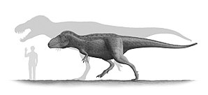 Tarbosaurus - Restoration of an adult and subadult Tarbosaurus next to a human