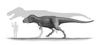 Tarbosaurus - Restoration of an adult and subadult Tarbosaurus next to a human