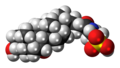 Taurochenodeoxycholic acid molecule spacefill.png
