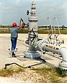 Technician checks valve on wellhead assembly at the Reserve's Big Hill site near Beaumont, TX.jpg