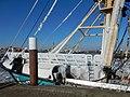 Texel - Oudeschild - Haven - 2 maart 2018 - IJsgang -005.jpg