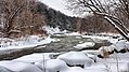 The Credit River, Mississauga (11791385864).jpg