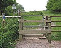 The Gloucestershire Way climbing up to May Hill summit - geograph.org.uk - 448145.jpg