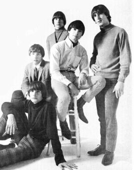 The Leaves, 1966