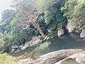 The Secret Beauty of Nature in Srilanka 3FE7D737-FF50-4950-BDFC-99199134839C.jpg