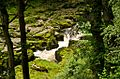 The Strid at Bolton Abbey.jpg