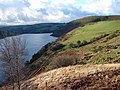 The north side of Llyn Clywedog - geograph.org.uk - 294256.jpg