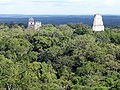 Tikal From Temple IV.jpg
