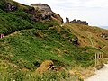 Tintagel Castle - geograph.org.uk - 217079.jpg