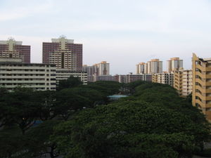 Geography of Singapore - Singapore's urban geography is often characterised by extensive use of HDB flats, which the majority of citizens reside in.