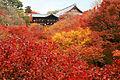 Tofukuji Kyoto01bs3200.jpg