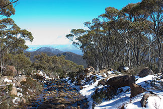 Tom Thumb vom Mount Wellington aus