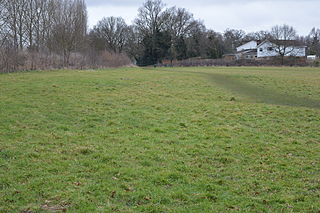 Top Field and Cozens Grove