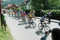 Tour de france 2005 8th stage olr 03.jpg