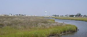 Tangier, Virginia - The marshes outside of town