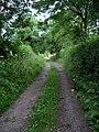 Track, Woodlinkin - geograph.org.uk - 191164.jpg