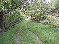 Track up to Nab End, Longwood - geograph.org.uk - 468598.jpg