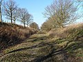 Trackbed, North Elmham - geograph.org.uk - 691022.jpg