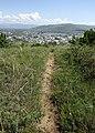 Trail and Gori.jpg