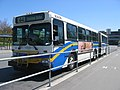 Translink-B3006.jpg
