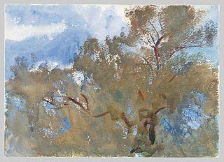 Treetops against Sky
