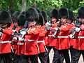 Trooping the Colour 2006 - P1110234 (169171259).jpg