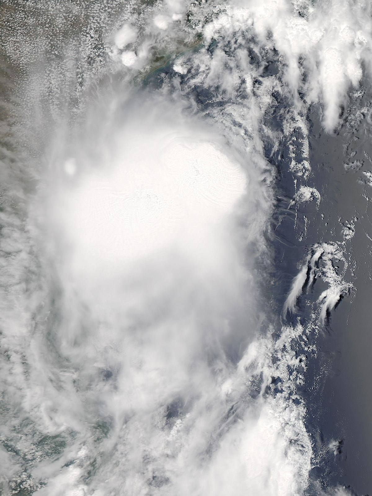 Tropical Storm Don (2011) - Wikipedia