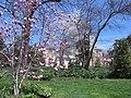 Tudor Place in April (17547955509).jpg