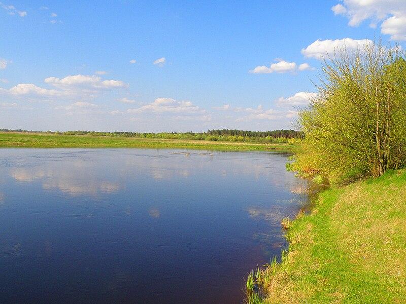 File:Turija river(Ukraine) 1.JPG