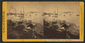U.S. Marine Hospital and Goat Island, from Steamboat Point, San Francisco, by Thomas Houseworth & Co..png