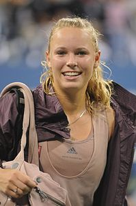 US Open 2009 4th round 281.jpg