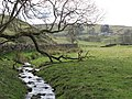 Un-named tributary of Mohope Burn - geograph.org.uk - 1288497.jpg