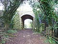 Under the old railway - geograph.org.uk - 1575918.jpg