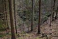 Unterwald-Ponor 11.jpg
