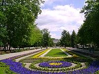 Uzdrowisko Inowrocław - Dywany kwiatowe.JPG