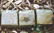 Three stone grave markers on the ground.