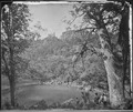 VIEW ON APACHE LAKE, SIERRA BLANCA RANGE, ARIZONA - NARA - 524311.tif