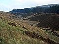 Valley of the Pilnyark Burn - geograph.org.uk - 263499.jpg