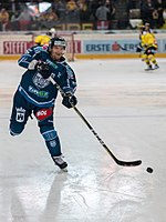 Vienna Capitals vs Fehervar AV19 -10.jpg