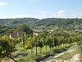 View from Bottyan Hill toward west, 2016 Szekszard.jpg