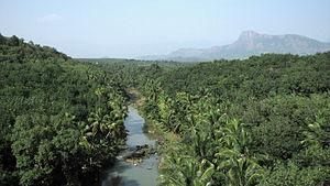 Pahrali River - Pahrali river viewed from Mathur Hanging Trough bridge.