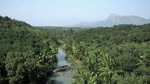 Kanyakumari district - View from the Mathur Hanging Trough bridge with the Pahrali river flowing below.