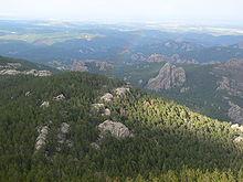 Photographie des Black Hills depuis le pic Black Elk.