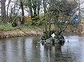Village Pond, Clawddnewydd - geograph.org.uk - 611522.jpg